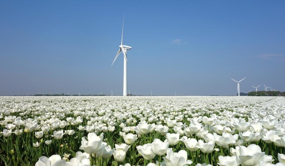 hvor meget energi producerer en vindmølle